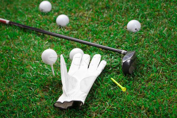 играть гольф мяч для гольфа зеленая трава трава Сток-фото © BrunoWeltmann