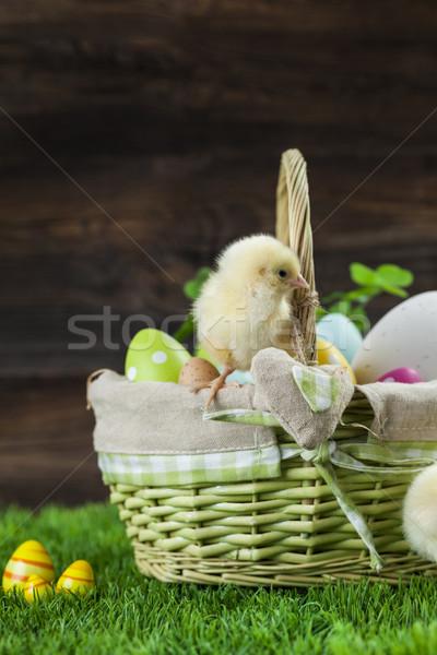 Húsvét vödör tojások fiatal körül tyúk Stock fotó © BrunoWeltmann