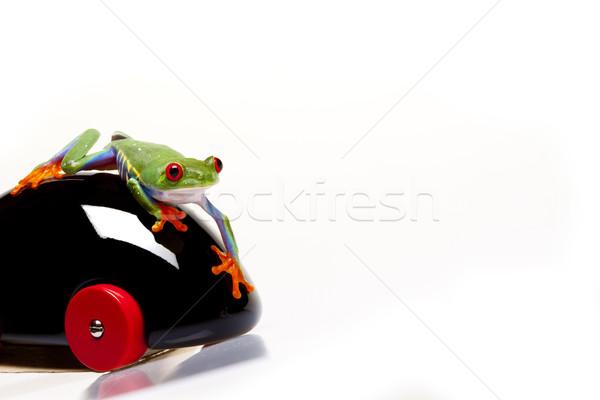 Zöld béka szem narancs piros kő Stock fotó © BrunoWeltmann