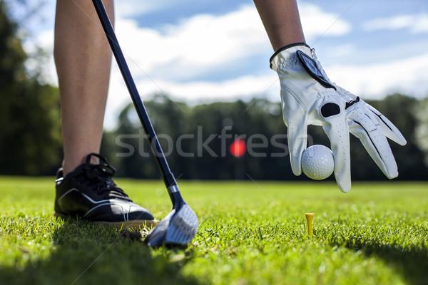 Szett golflabda szeg lány mosoly sport Stock fotó © BrunoWeltmann