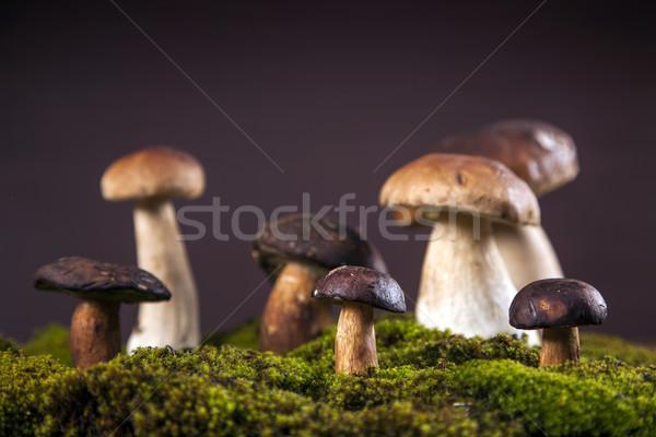 Frescos setas caída alimentos mesa de madera forestales Foto stock © BrunoWeltmann