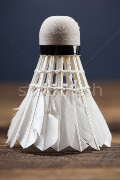 A set of badminton. Paddle and the shuttlecock. Stock photo © BrunoWeltmann