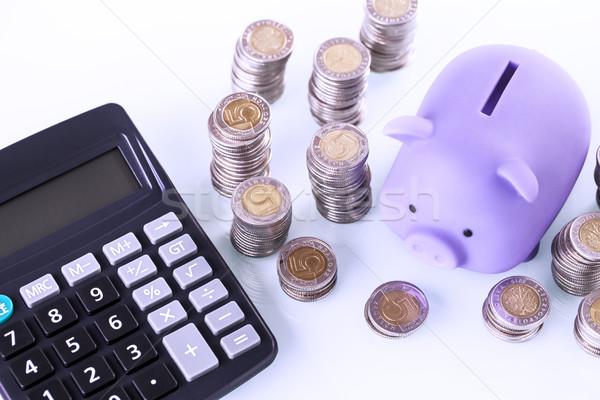 Persely pénz fehér pénzügyi otthon megtakarított pénz Stock fotó © BrunoWeltmann