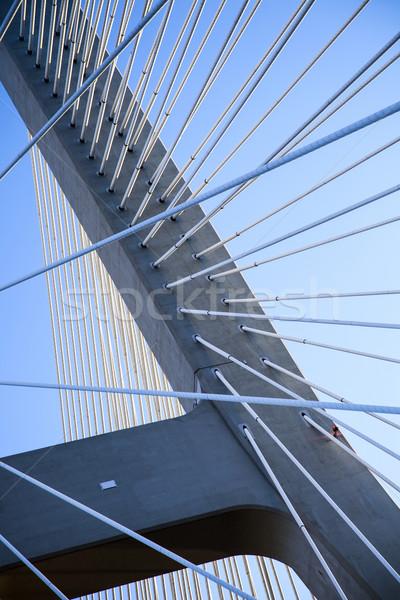Beautiful photo of a rope bridge Stock photo © BrunoWeltmann