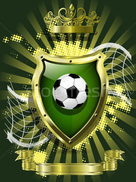 soccer ball on background of the shield Stock photo © brux