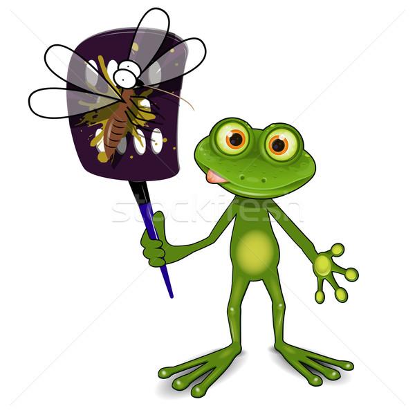 Rana zanzara illustrazione verde animale insetto Foto d'archivio © brux