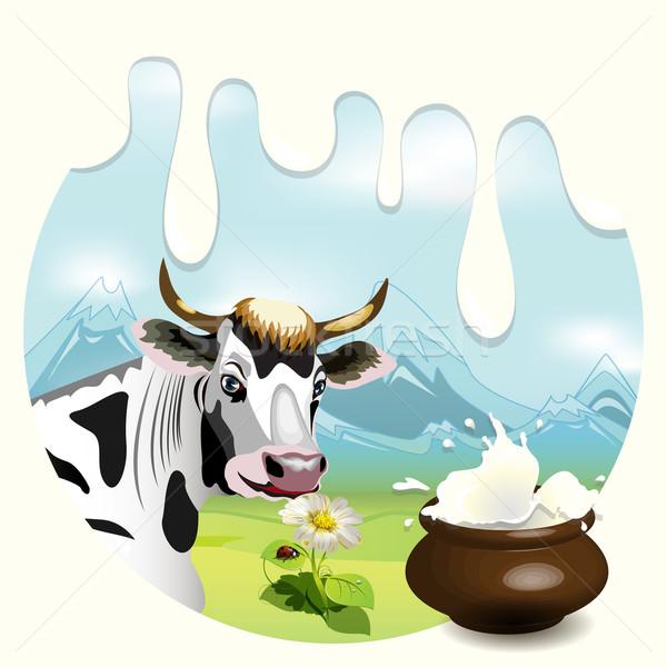 milk Stock photo © brux