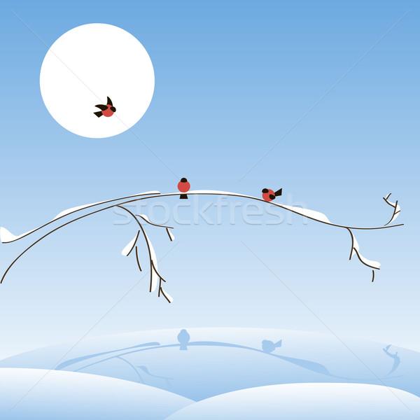 Tél illusztráció faág fa tájkép hó Stock fotó © brux