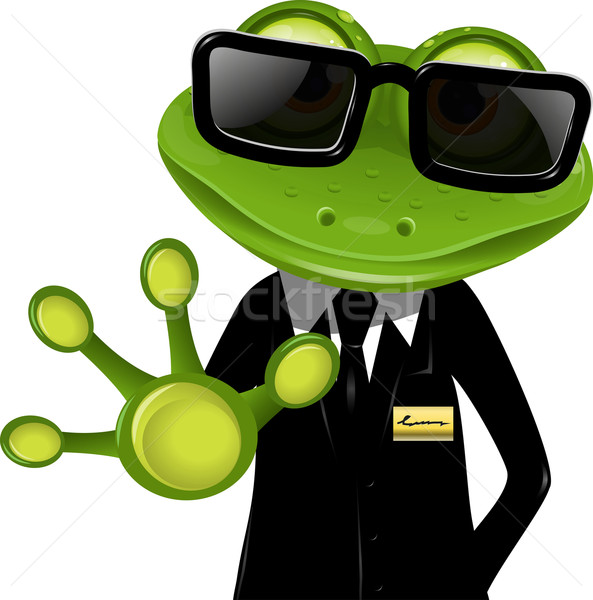 frog security guard2 Stock photo © brux
