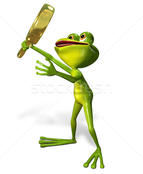 green frog with magnifying Stock photo © brux