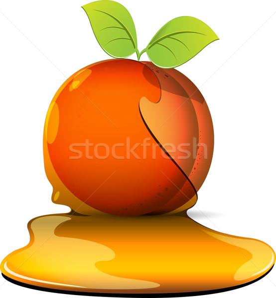 őszibarackok karamell illusztráció narancs lap gyümölcs Stock fotó © brux