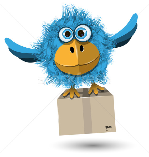 Blue Bird with a box Stock photo © brux