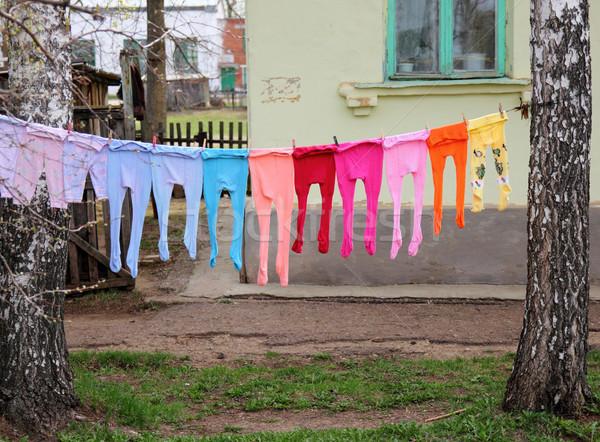 Children's multi-colored tights Stock photo © brux