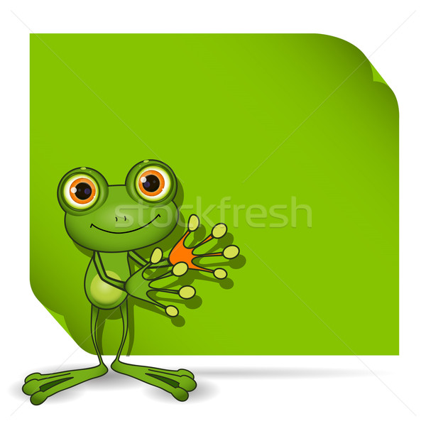 Frog and green background Stock photo © brux