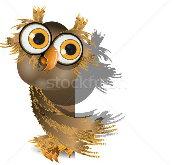 Uil witte nieuwsgierig grote ogen bos vogel Stockfoto © brux