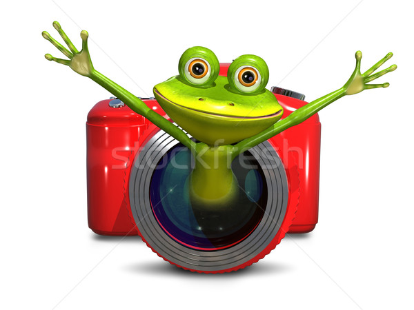 Frog in the camera Stock photo © brux