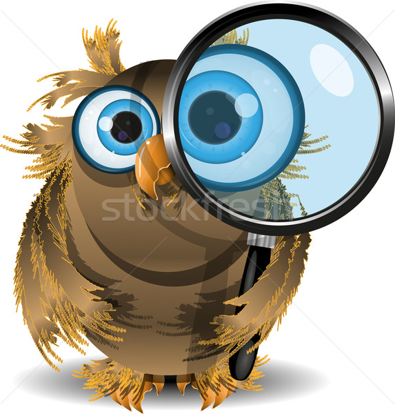 curious owl Stock photo © brux