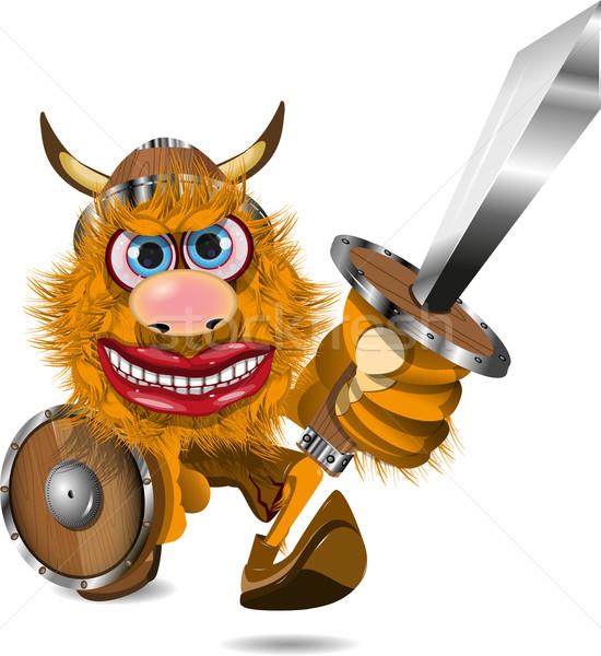 Agressivo viking ilustração espada militar Foto stock © brux
