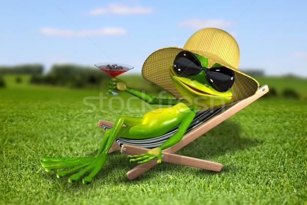 Сток-фото: лягушка · палуба · Председатель · трава · иллюстрация · глаза