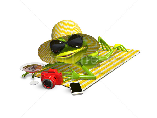 Frog in hat with glasses on a towel Stock photo © brux