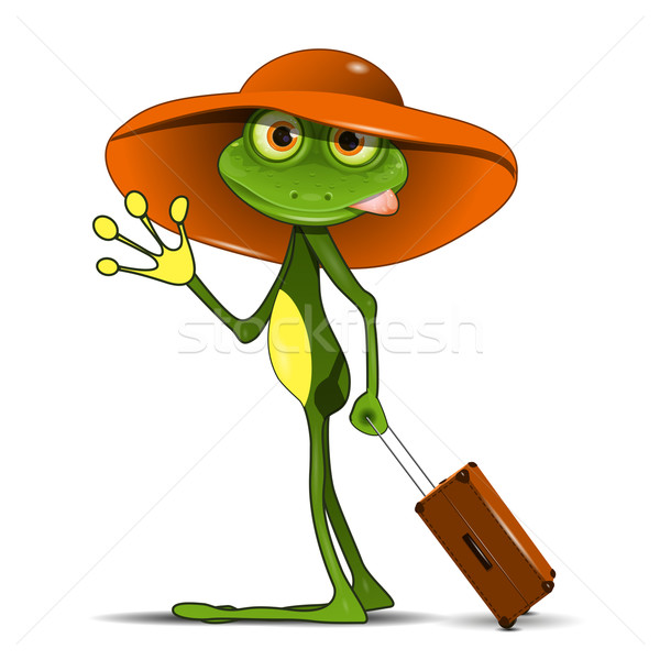 Frog with a suitcase Stock photo © brux