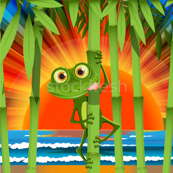 Rana illustrazione singolare stelo bambù legno Foto d'archivio © brux