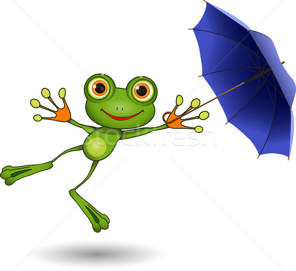 Stock photo: Frog with Umbrella