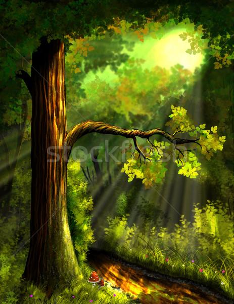 лес иллюстрация тропе цветок дерево трава Сток-фото © brux