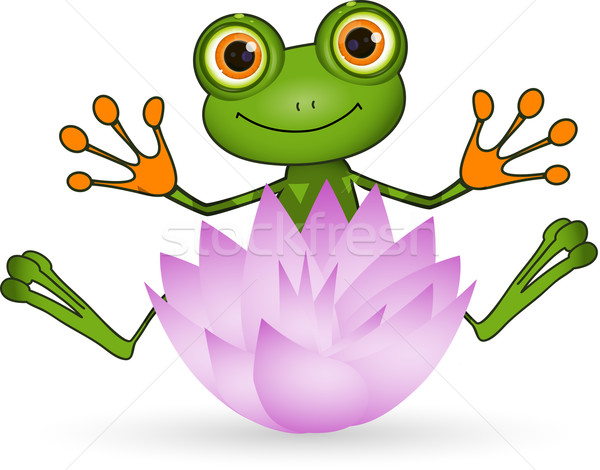 Frog and Flower Stock photo © brux