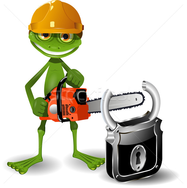 Frog and padlock Stock photo © brux