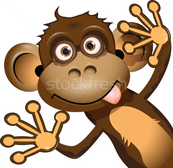 Divertente scimmia illustrazione rosolare bianco sorriso Foto d'archivio © brux