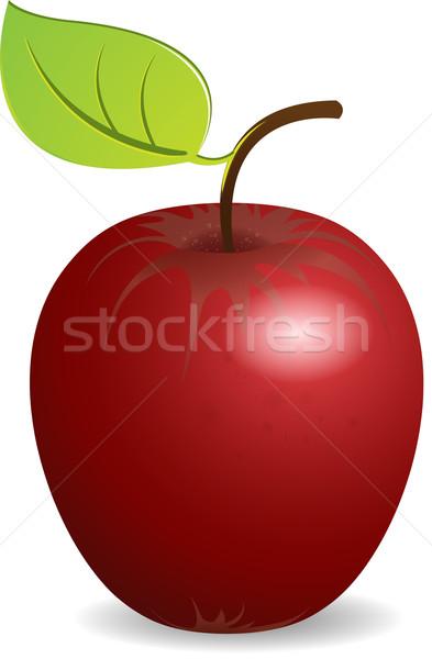 Mela rossa illustrazione verde foglio bianco natura Foto d'archivio © brux
