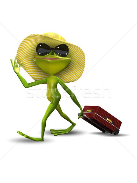 Grenouille valise chapeau illustration vert Voyage Photo stock © brux