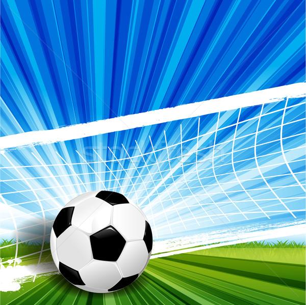 Futebol ilustração couro futebol verde erva Foto stock © brux