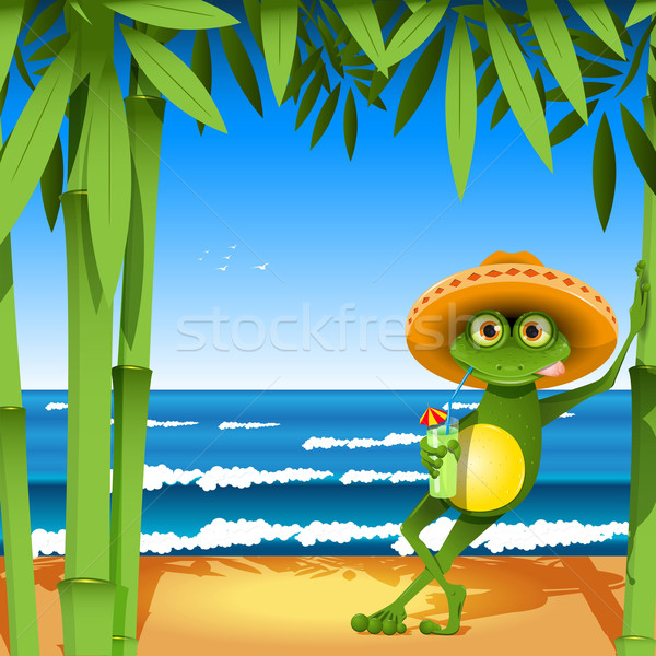 frog on the beach Stock photo © brux