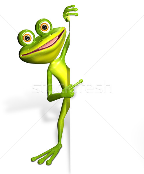 Stock photo: Frog and white background