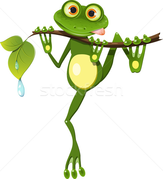 frog on a branch Stock photo © brux