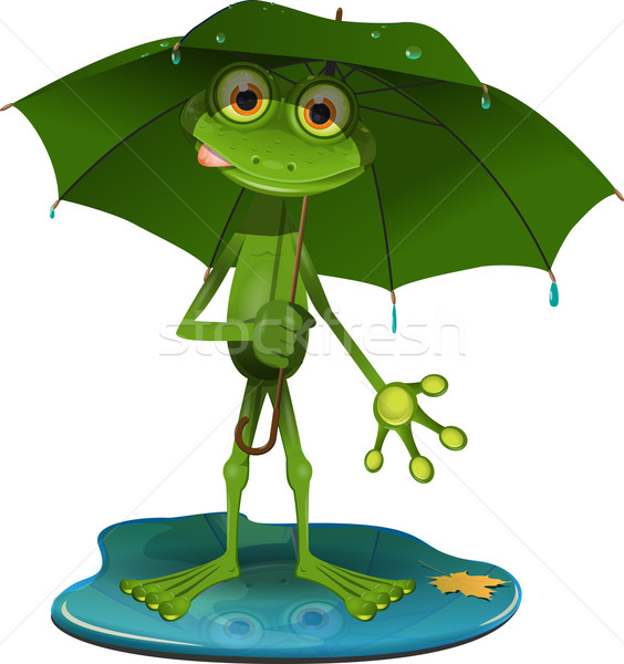 Stock photo: Frog with a green umbrella