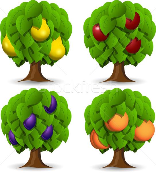 fruit trees Stock photo © brux