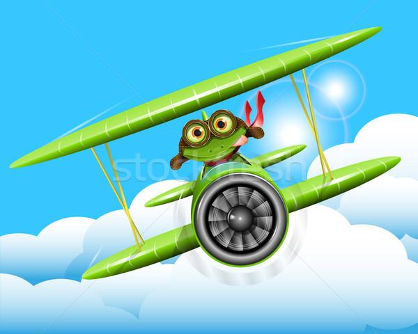 frog pilot Stock photo © brux
