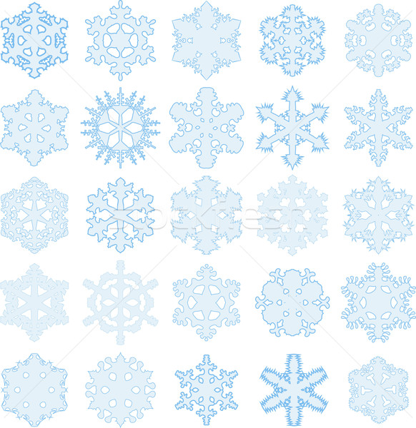 snowflakes Stock photo © brux