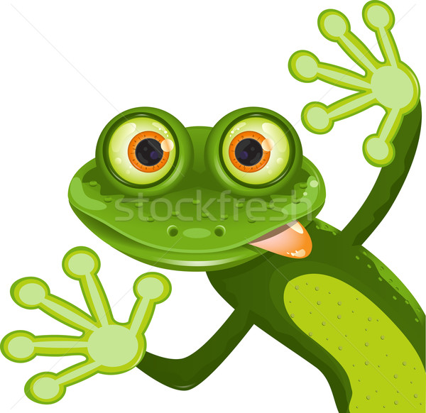 Grenouille illustration joyeux vert animaux patte Photo stock © brux
