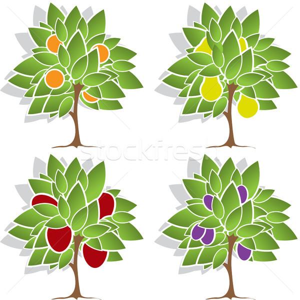 Four fruit trees Stock photo © brux