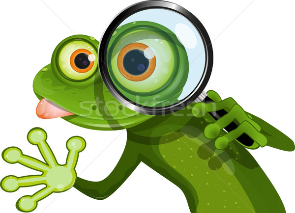Stock photo: Frog and magnifying glass