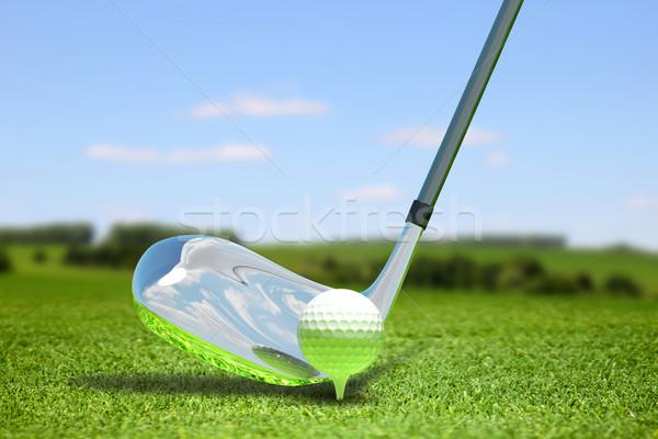 Golf absztrakt illusztráció labda gyógynövény sport Stock fotó © brux