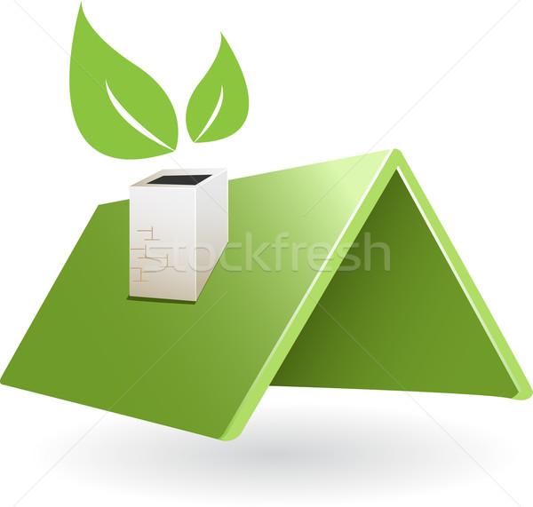 Telhado ilustração abstrato verde folha casa Foto stock © brux