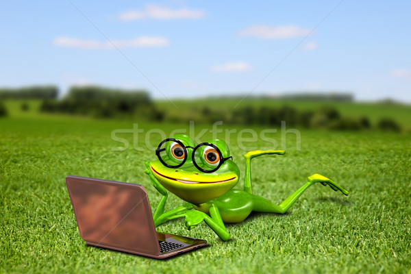 Stock photo: Frog with a laptop on the grass