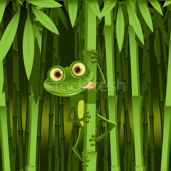 curious frog Stock photo © brux