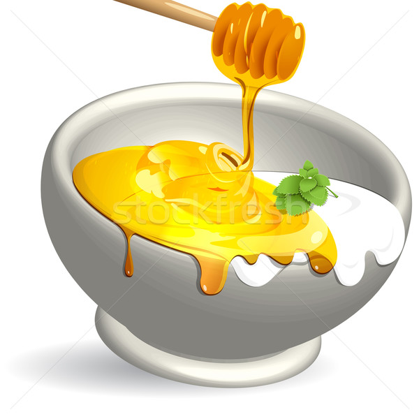 dairy product and honey Stock photo © brux
