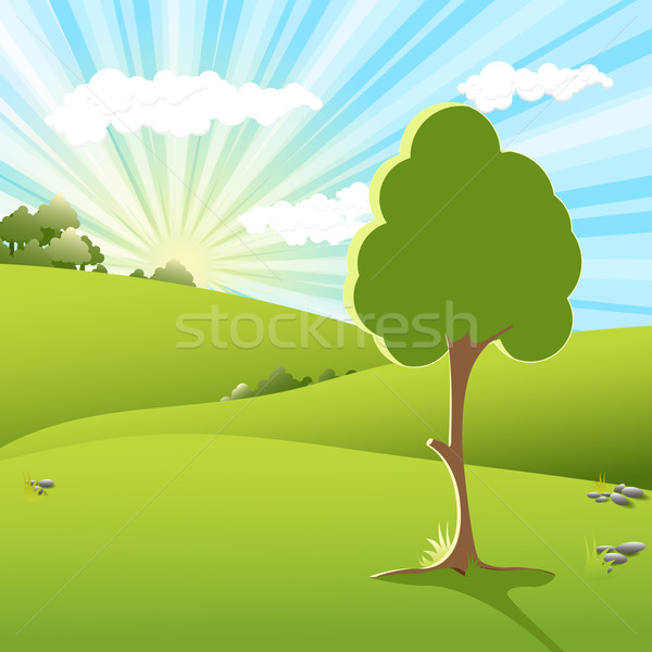 tree an sundown Stock photo © brux